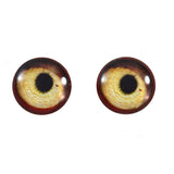 16mm vulture eyes