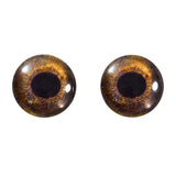 16mm hawk eyes