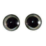 20mm skipjack tuna fish eyes