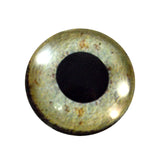25mm eagle eye