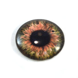 Brown Clockface Steampunk Glass Eye