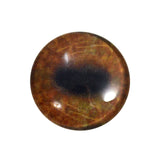 brown moose glass eye