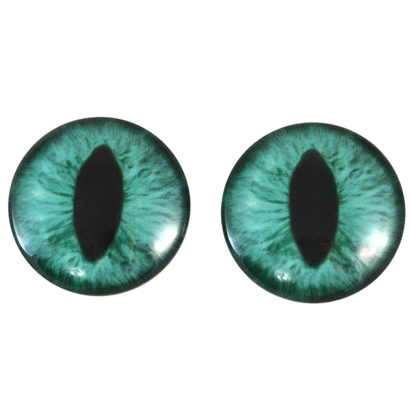 Teal Cat Glass Eyes