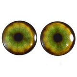 40mm tiger glass eyes