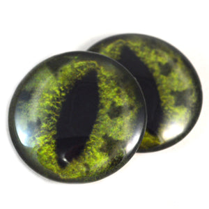 Green Alligator Glass Eye