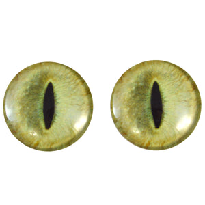 pale yellow cat eye