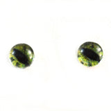 Green Alligator Glass Eyes