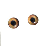 6mm brown dog glass eyes