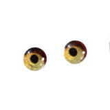 6mm vulture eyes