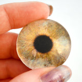 Antique World Map Animated Glass Eyes