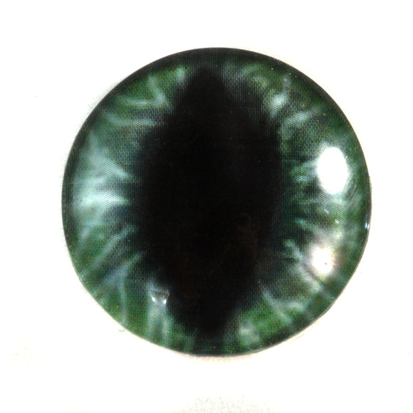 Wide Green Dragon Glass Eye