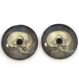 Black and White Skull Animated Glass Eyes