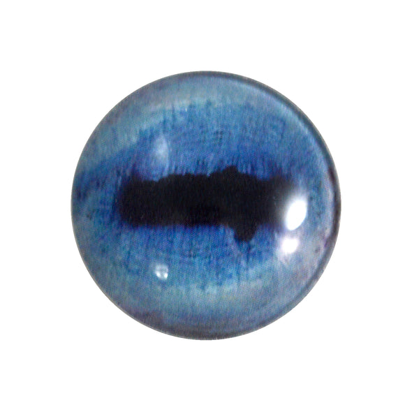 blue goat glass eye