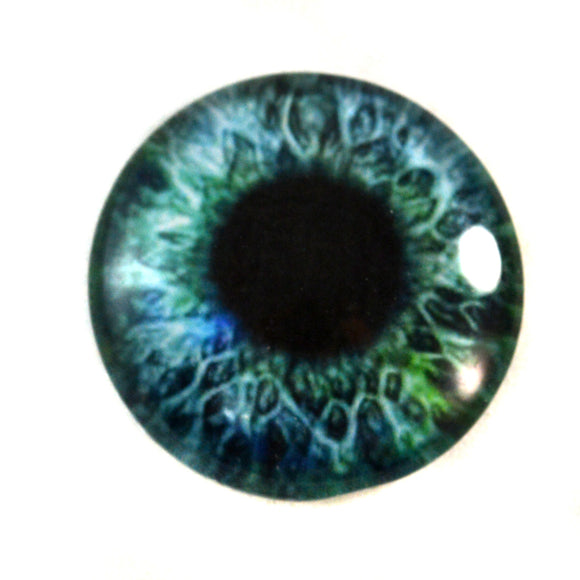 Green and Blue Human Glass Eye