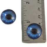 Blue and Gunmetal Burst Animated Glass Eyes