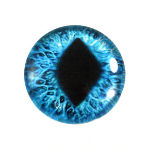 Bright Blue Cat Glass Eye