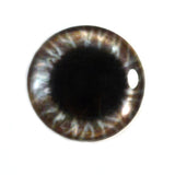 Wide Brown Round Glass Eye