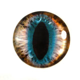 Brown and Teal Cat Glass Eye