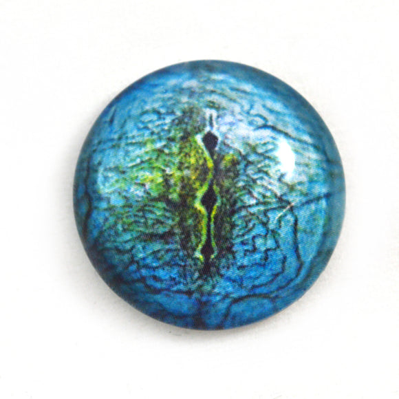 Blue Lizard Reptile Glass Eye