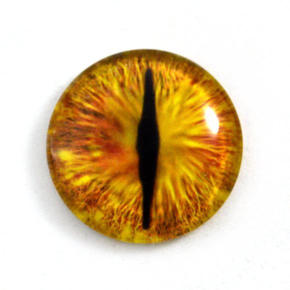 Gold Dragon Eye