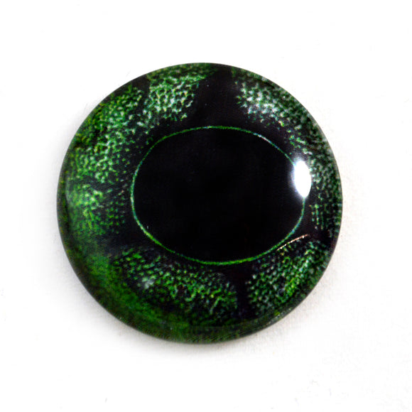 Green Frog Glass Eye