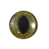 realistic green and brown cat eye