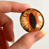 Orange Cat or Dragon Glass Eye