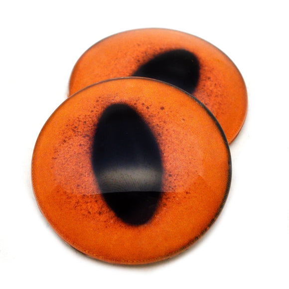 Orange Fox Glass Eyes