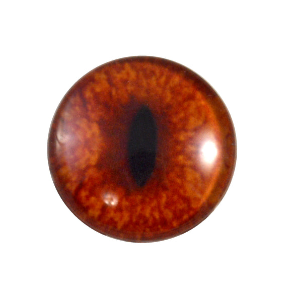 red fox glass eye