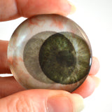 Round Green Spooky Animated Human Glass Eyes
