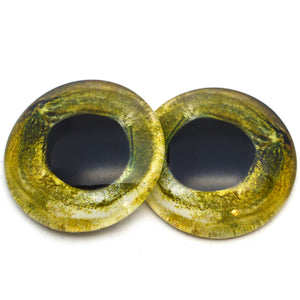 Sockeye Salmon Fish Glass Eyes