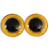 Big 50mm Glass Owl Eyes Yellow 2 Inch Bird Taxidermy