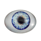 Blue Doll Oval Glass Eye
