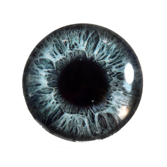 Sparkling Gray Human Glass Eye
