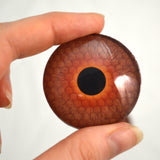 Deep Amber Honeycomb Glass Eye