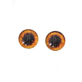 Ring of Fire Dragon Glass Eyes