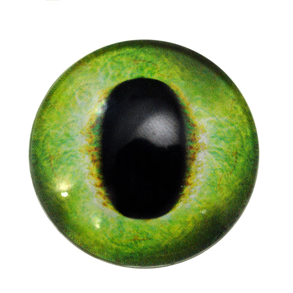 Friendly Green Dragon Glass Eyes