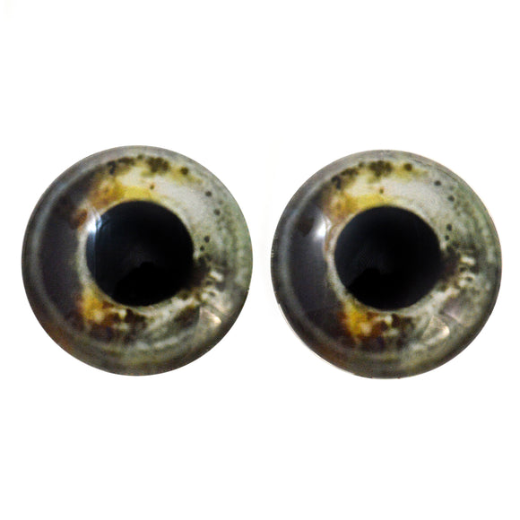 Koi Fish Glass Eyes