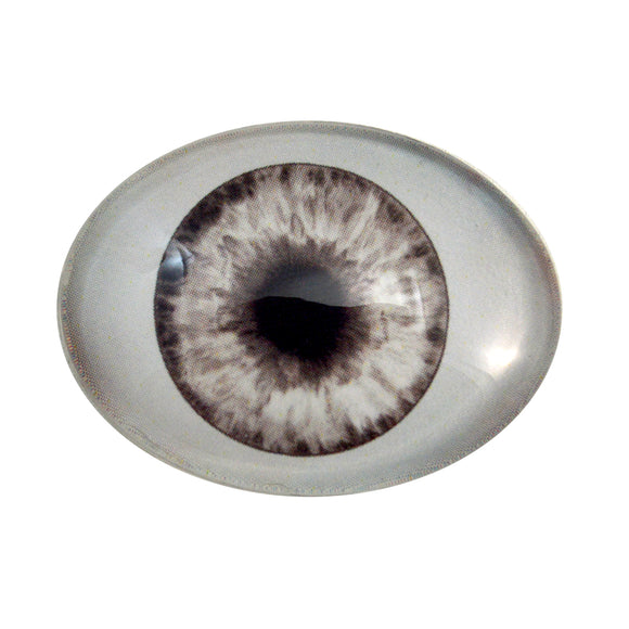Gray Doll Oval Glass Eye