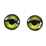 green sea turtle eyes