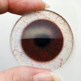 Dark Brown Human Glass Eyes with Whites