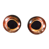 red bass glass fish eyes