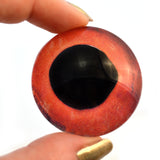 Red Fish Glass Eyes