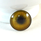 Tan Lion Glass Eye