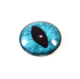 Teal Cat Glass Eye