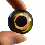 Yellow and Green Fish Glass Eye
