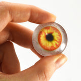 Orange and Yellow Human Glass Eye with Whites