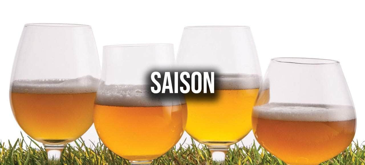 Saison / Farmhouse / Grisette