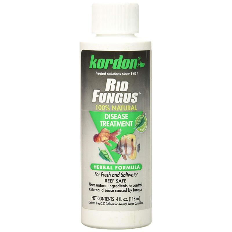 Kordon Rid Fungus Disease Treats 118ml (4fl oz)