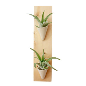 Double Wall Planter